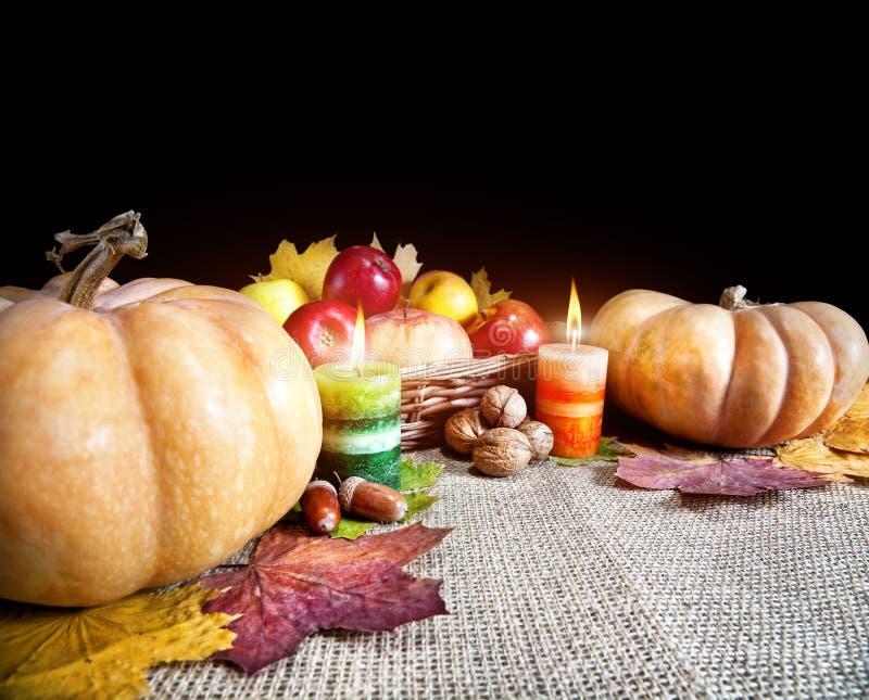 Tacksägelsedagskörd fotografering för bildbyråer