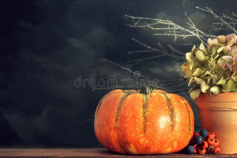 Tacksägelsestilleben med pumpa och torra blommor royaltyfria foton
