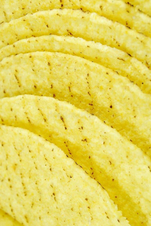 taco κοχυλιών στοκ εικόνες με δικαίωμα ελεύθερης χρήσης