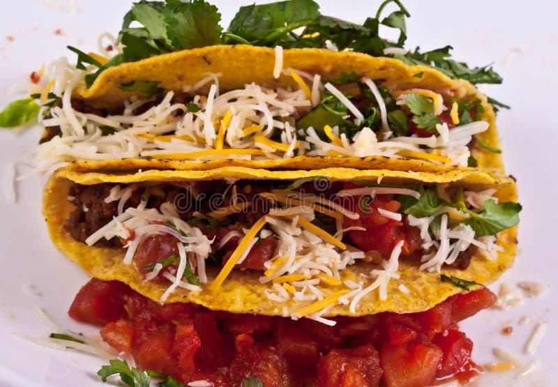 taco стоковая фотография