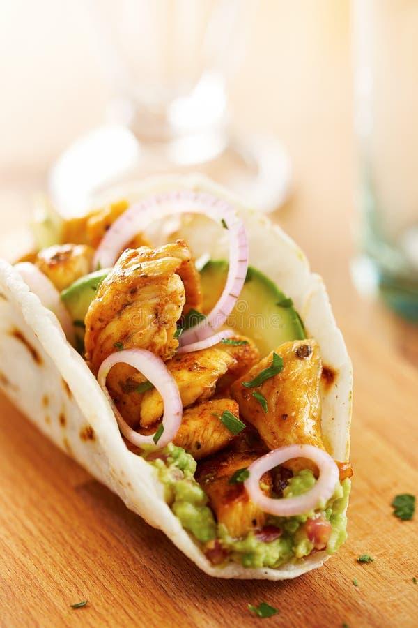 Taco de pollo mexicano con el aguacate fotos de archivo libres de regalías