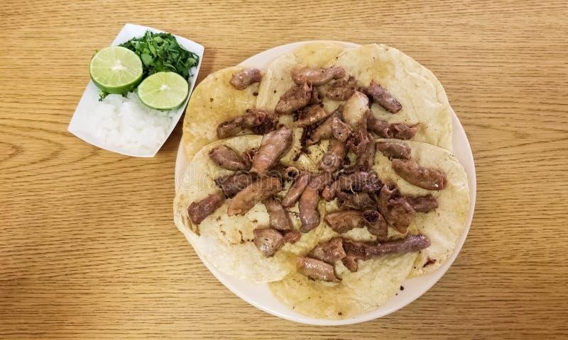 Taco de tripitas Tortilla avec des tripes de boeuf Nourriture mexicaine traditionnelle avec le citron images libres de droits