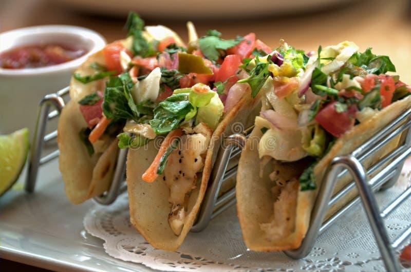 Taco fisk arkivbilder