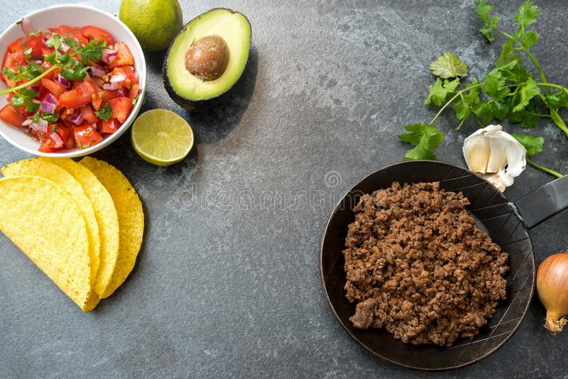 Taco ingredients with roasted beef, tomatoe salsa, avocado and h stock photo