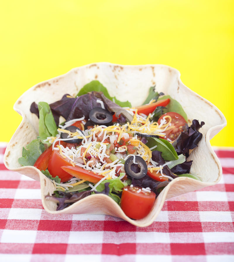 Download Taco Salad On Checkered Tablecloth Stock Image - Image: 27465949
