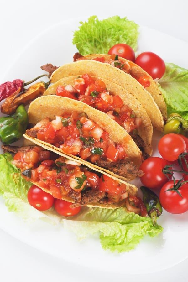 Taco skorupy obraz stock