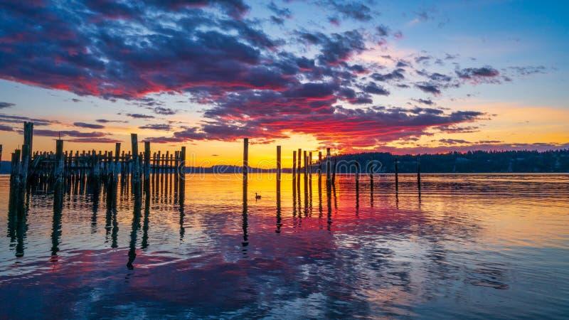 Tacoma begr?nsar solnedg?ng ?ver Puget Sound royaltyfri fotografi