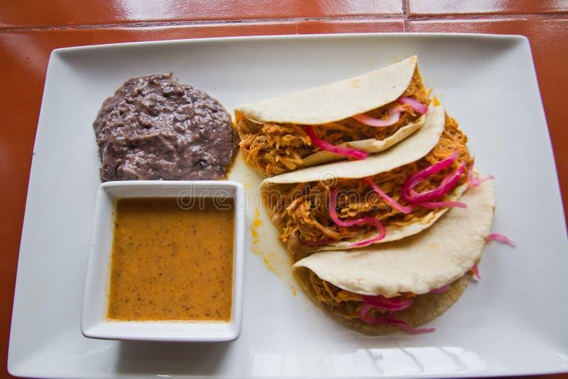 Tacos Cochinita Pibil lizenzfreie stockfotos
