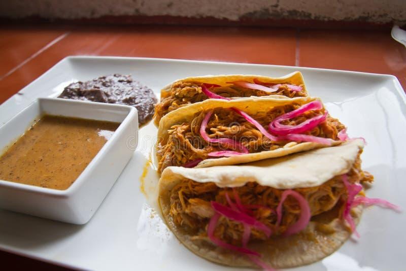Tacos Cochinita Pibil mit Schweinefleisch und schwarzen Bohnen lizenzfreie stockbilder
