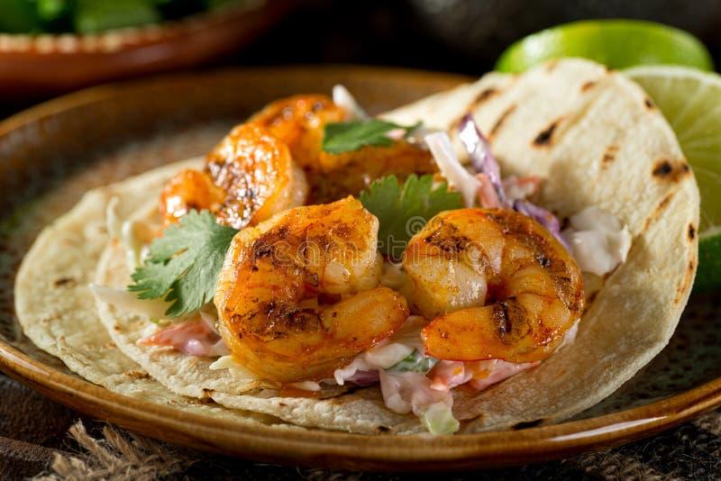 Tacos de crevette images libres de droits