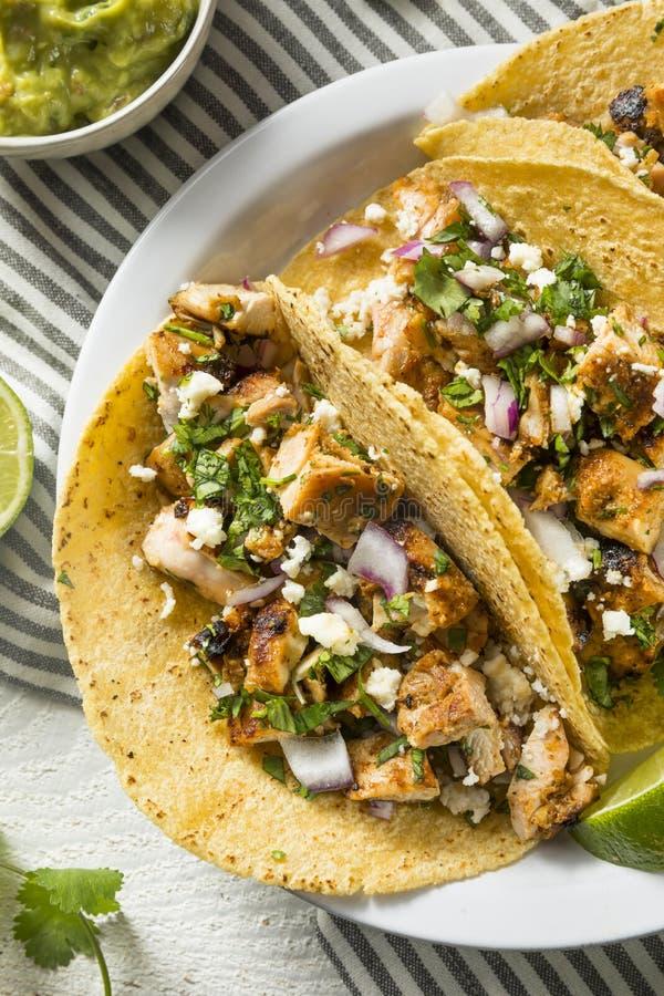 Tacos de poulet fait maison à l'oignon images stock