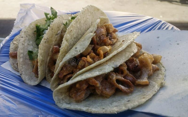 Tacos delicioso imagem de stock