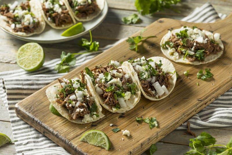 Tacos fait maison épicé de Barbacoa de boeuf photos libres de droits