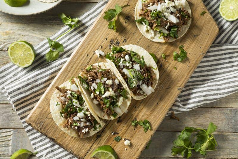 Tacos fait maison épicé de Barbacoa de boeuf image libre de droits