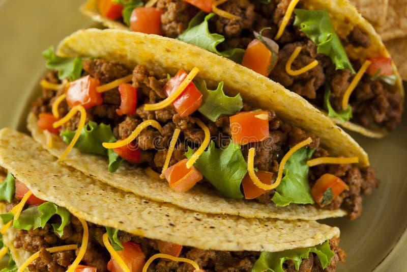Tacos fait maison de boeuf hach photo stock image du poivron frais 33779920 - Comment faire des tacos maison ...