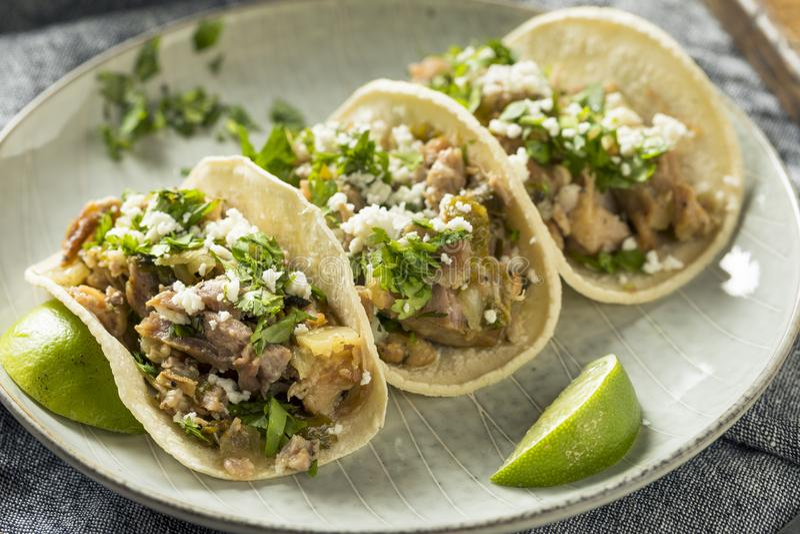 Tacos fait maison de Carnitas de porc photographie stock libre de droits
