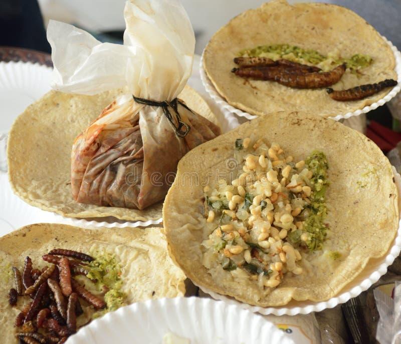 Tacos fritos de los insectos, cocina mexicana fotos de archivo