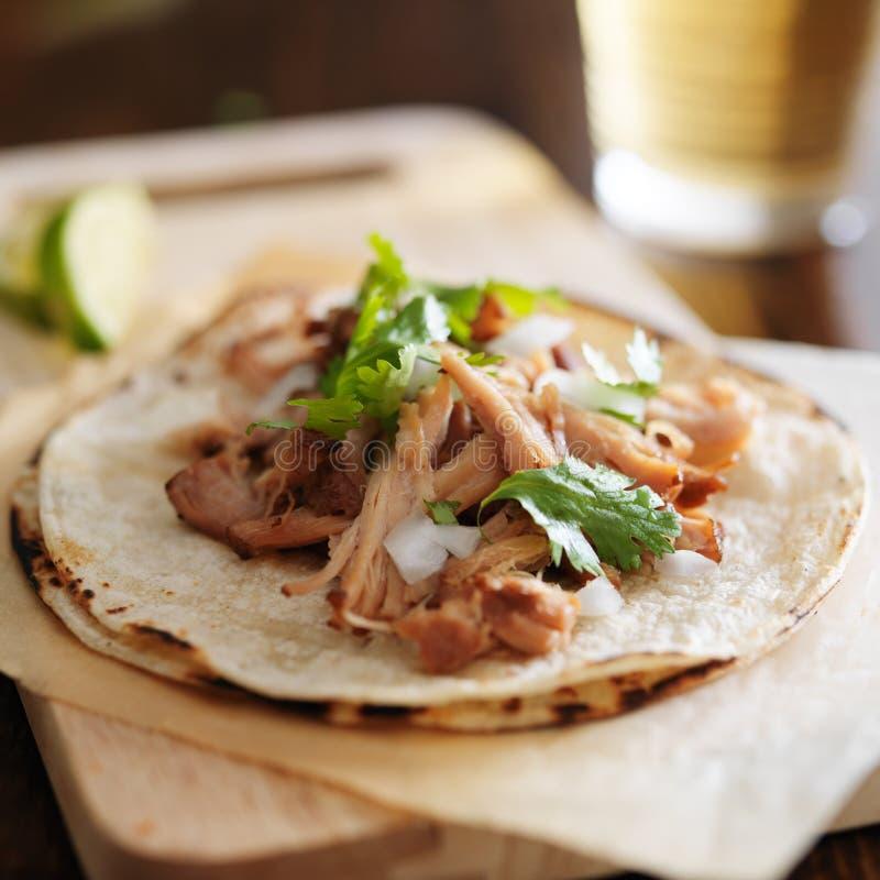 Tacos mexicain avec des carnitas photographie stock