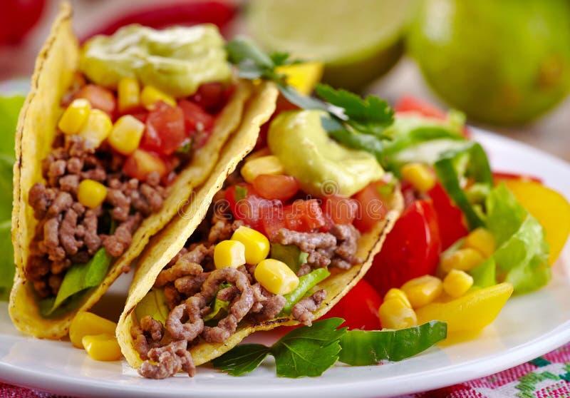 Tacos mexicain de nourriture image libre de droits
