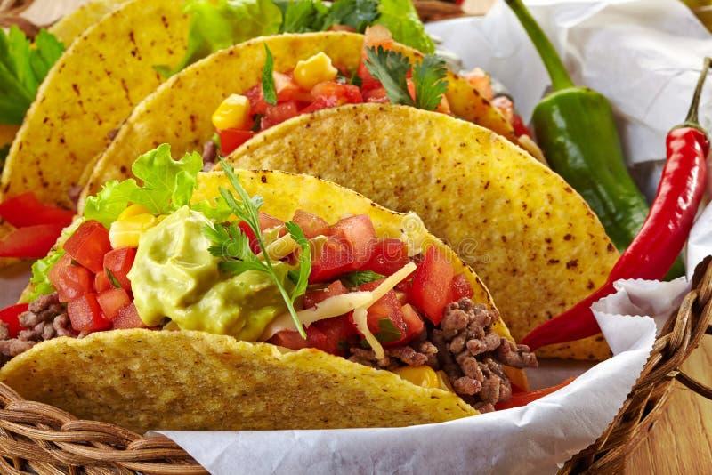 Tacos mexicanos do alimento foto de stock