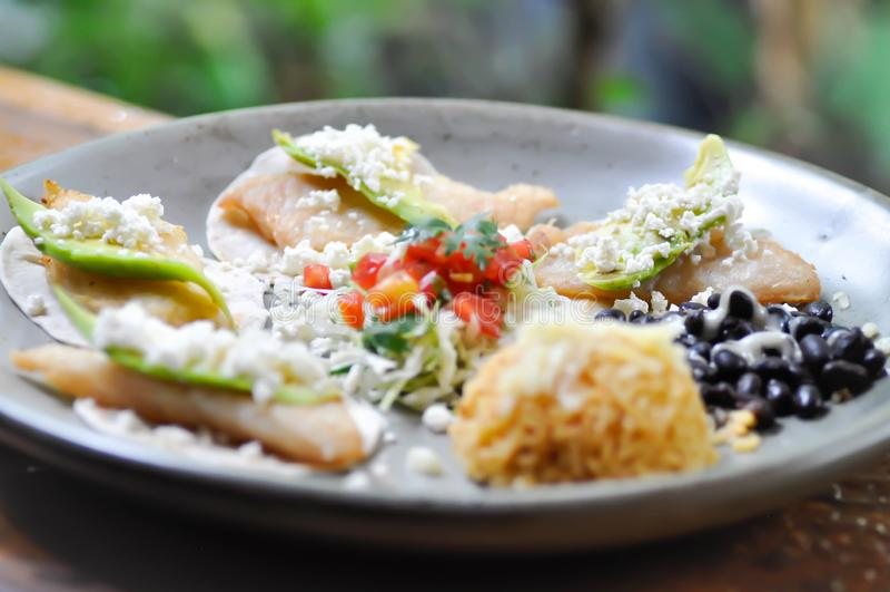 Tacos ou taco de poissons noirci avec le Salsa photo stock