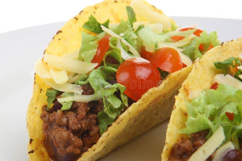 Tacos picante da carne imagem de stock