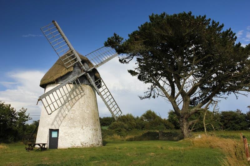 Tacumshane väderkvarn Wexford ireland arkivfoton