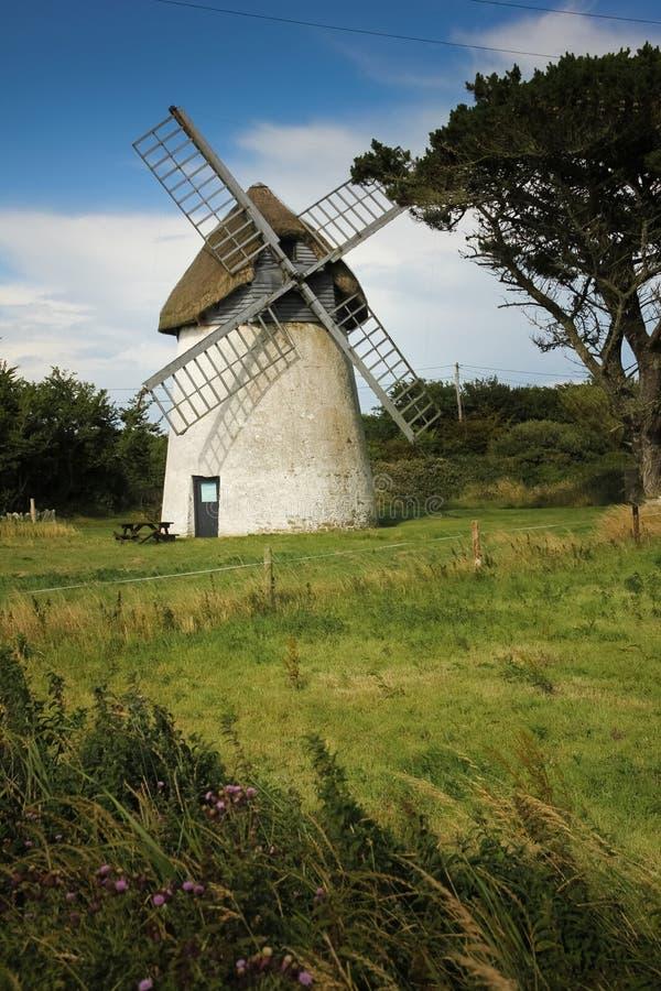 Tacumshane väderkvarn Wexford ireland arkivbilder