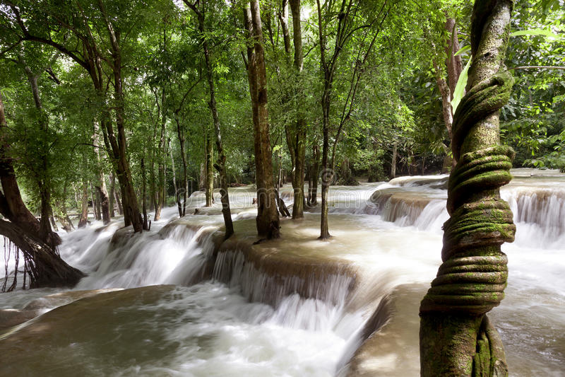Tad Sae Waterfall image libre de droits