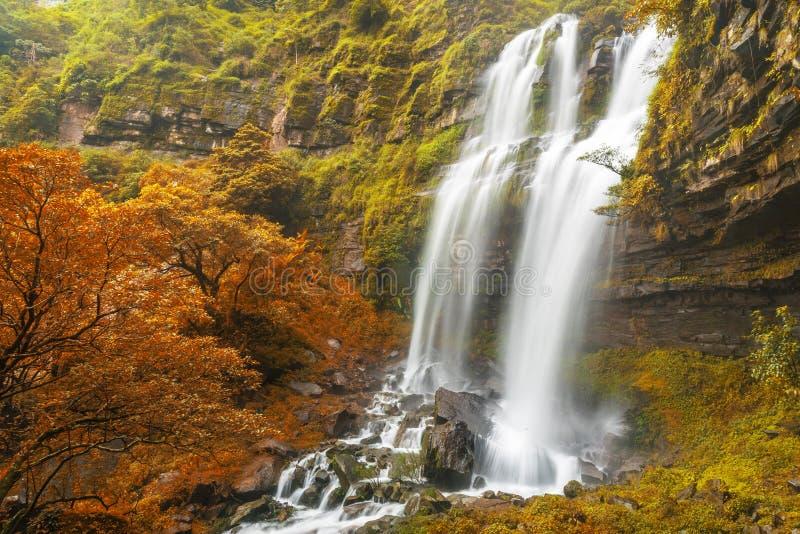 Tad TaKet-Wasserfall, großer Wasserfall A im tiefen Wald an Bolaven-Hochebene auf Herbst, Verbot Nungs-Lunge, Pakse, Laos stockbild
