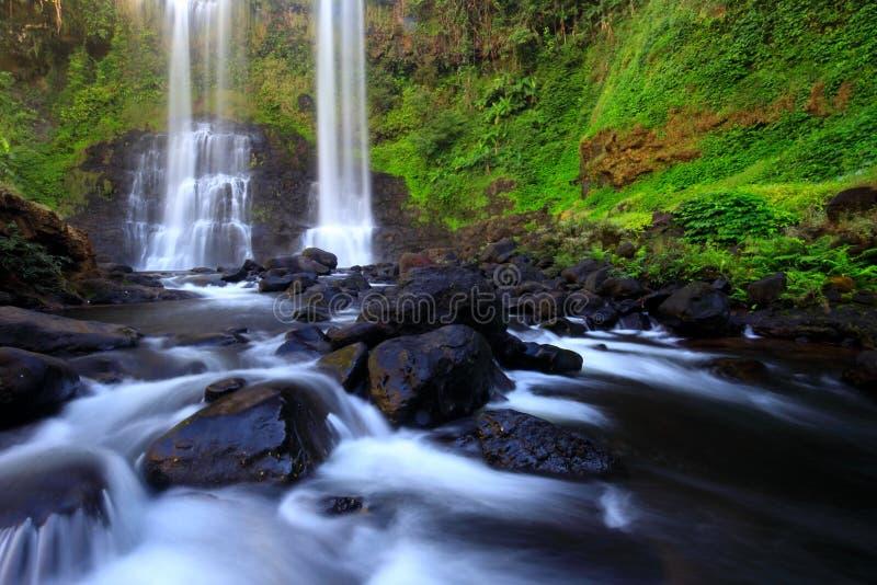 Tad Yuang-Wasserfall bolaven herein die Hochebene, die durch wild wachsende Pflanze mit langer Belichtungsbewegungstechnik, Pakse stockfotografie