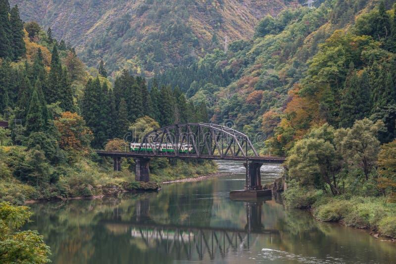 Tadami rzeka z mostem i pociągiem obrazy royalty free