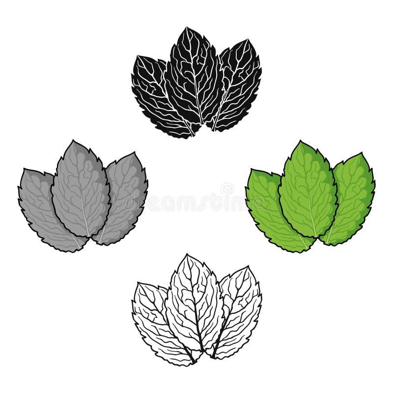 Tadellose Ikone in der Karikatur, schwarze Art lokalisiert auf weißem Hintergrund Kraut eine Gew?rzsymbolvorrat-Vektorillustratio vektor abbildung