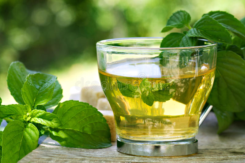 Tadelloser Tee lizenzfreies stockfoto