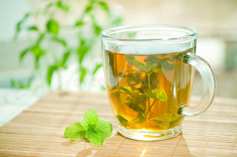 Tadelloser Tee stockfoto