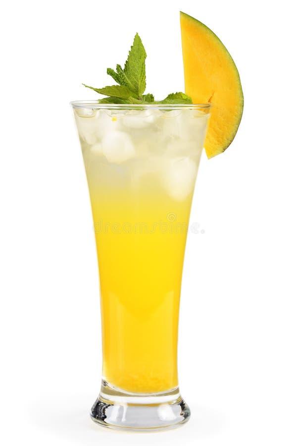 Tadelloses Cocktail der Mangofrucht. stockbild