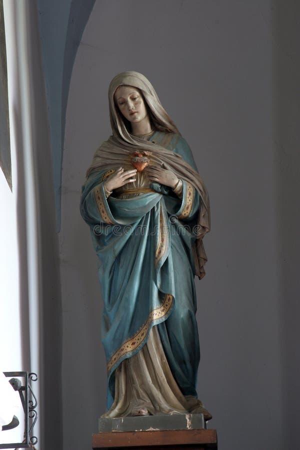 Tadelloses Inneres von Mary stockbild