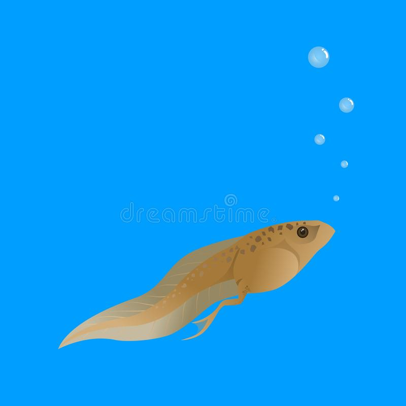 Tadpoles are in the water and breathing with bubbles vector illustration
