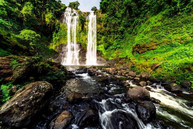 TadYeung vattenfall den höga och härliga vattenfallet i Laos fotografering för bildbyråer