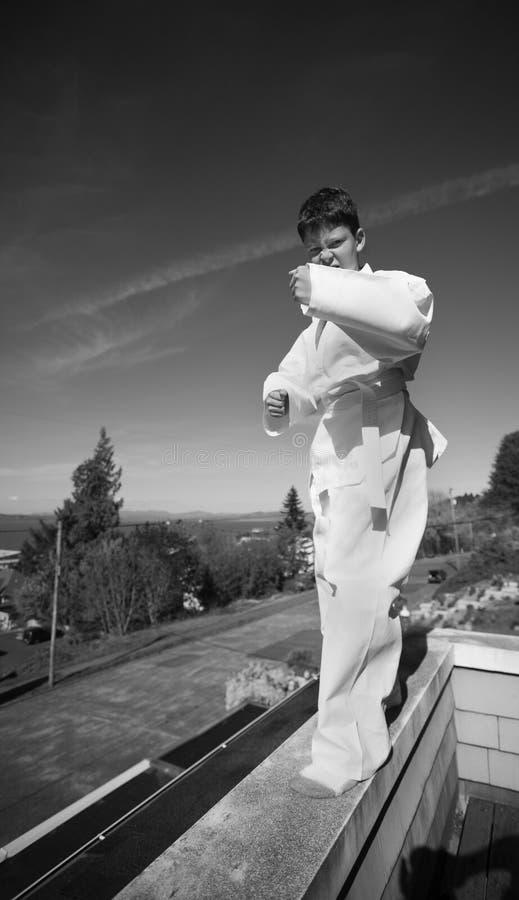 Download Tae Kwon Do stock image. Image of judo, kickboxing, kwon - 729719