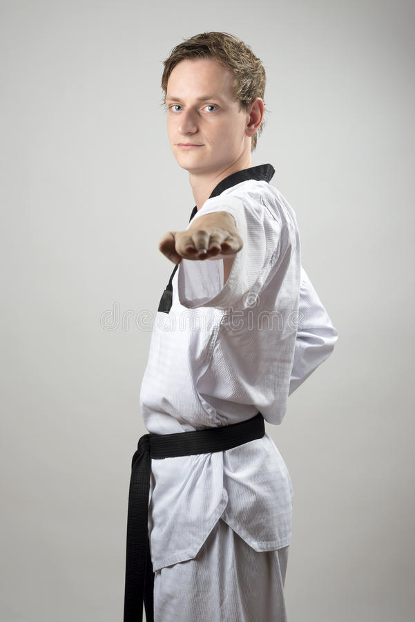 Taekwon-Do Hand Technique Stock Image