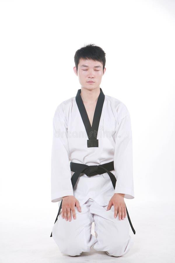 Download Taekwondo stock photo. Image of kimono, male, healthy - 14157088