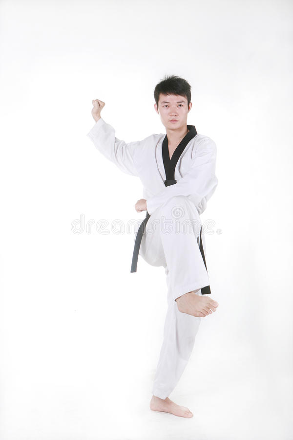 Taekwondo foto de stock royalty free
