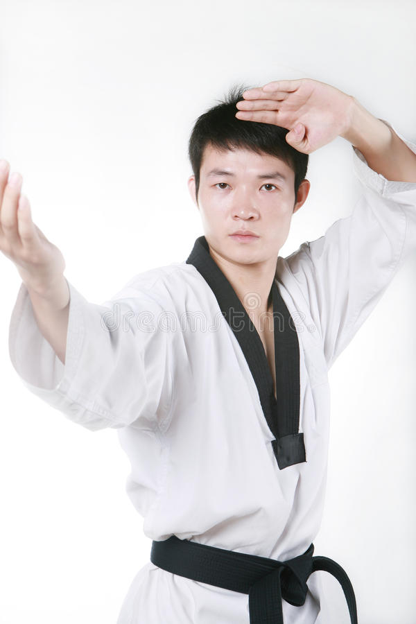 Download Taekwondo stock photo. Image of kick, activity, korean - 14157610