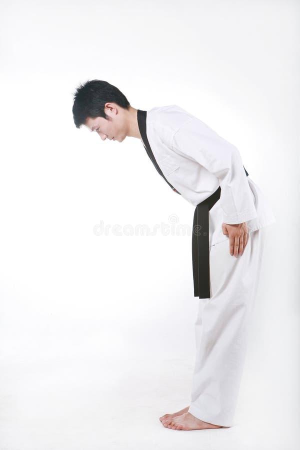 Download Taekwondo Royalty Free Stock Photos - Image: 14158418