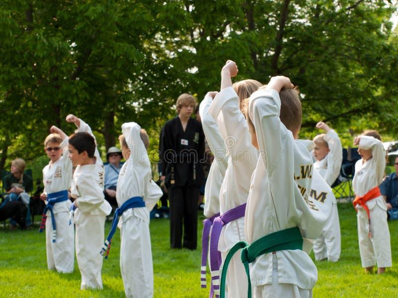 Taekwondo royalty-vrije stock afbeelding
