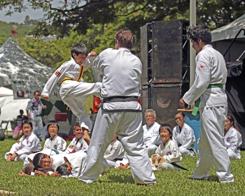 Taekwondo stock fotografie