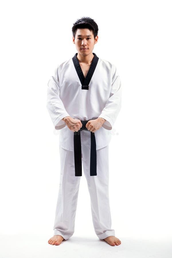 Taekwondo akcja zdjęcia stock