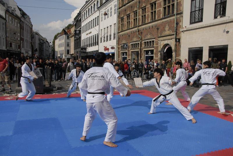 Taekwondo-Friedenskorps lizenzfreie stockfotografie