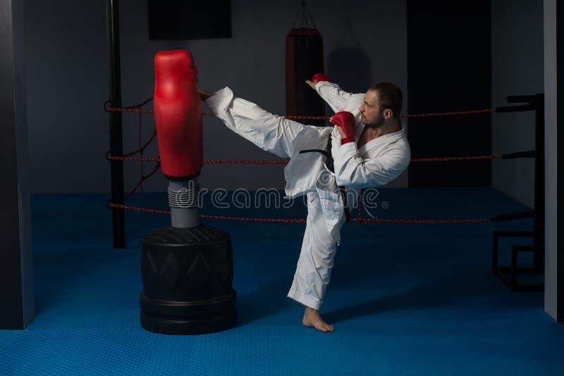 Taekwondo kämpeexpert med kampslagställning fotografering för bildbyråer
